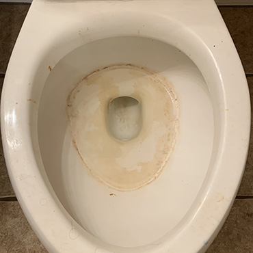 house cleaning services dirty toilet