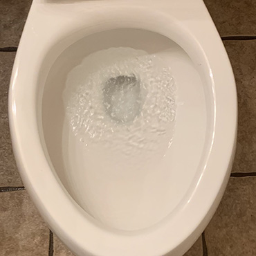 house cleaning services clean toilet